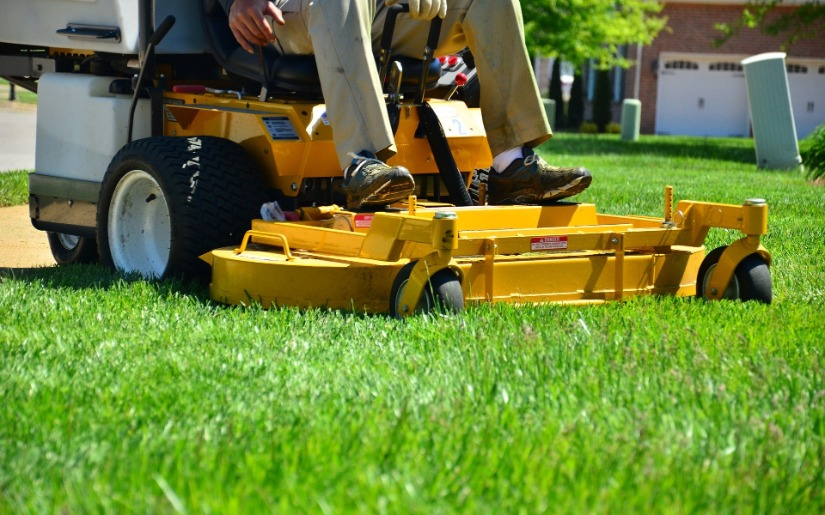 Environmental Assessment of Intensive Lawn Care