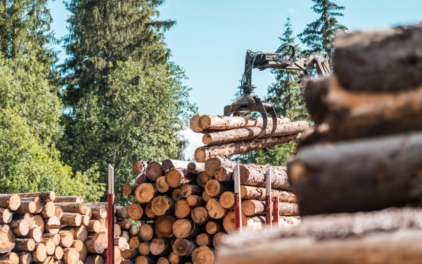 Responsible Sourcing of Forest Products: The roles for govt licensed timber and third-party cert