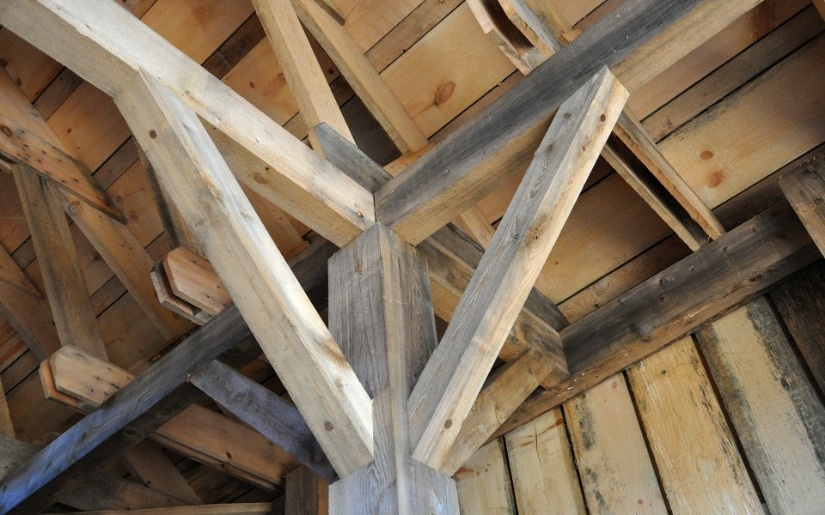 Building with Wood: Proactive Climate Protection