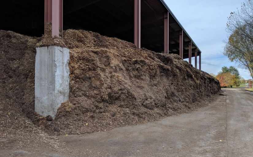 Energy from Woody Biomass